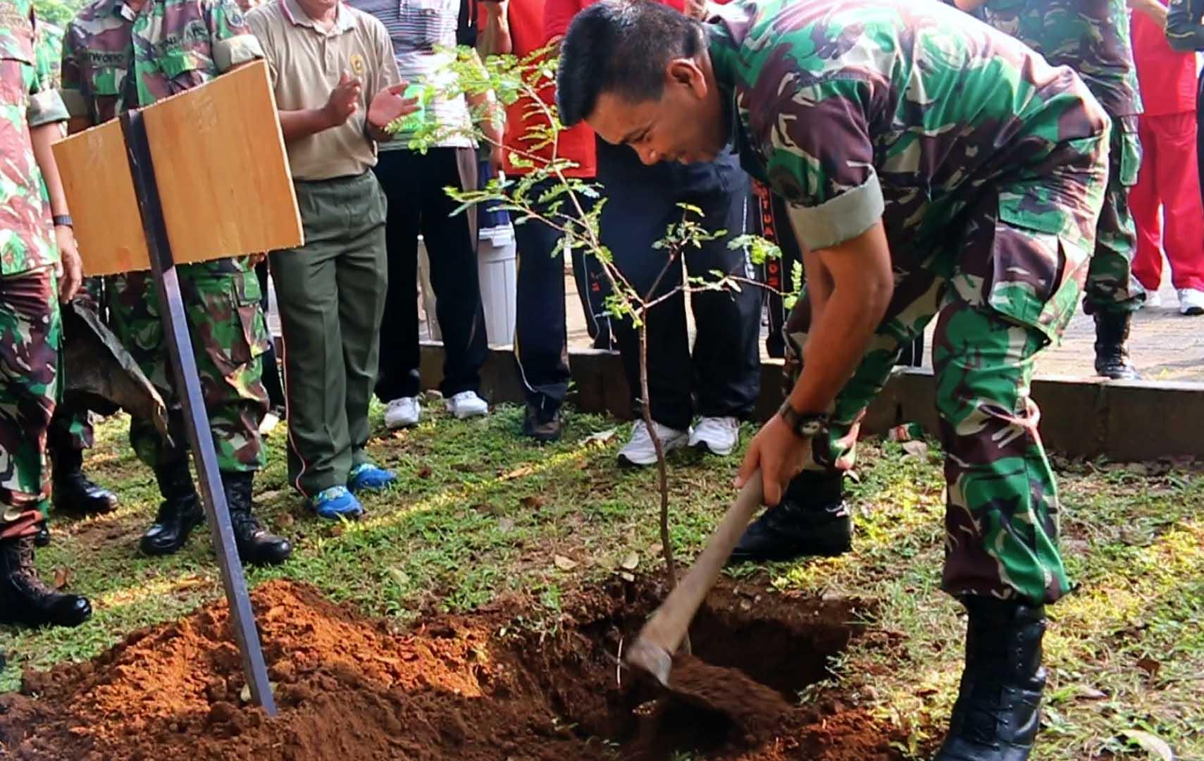 Pilih Pohon Tepat, Keuntungan Ganda Didapat