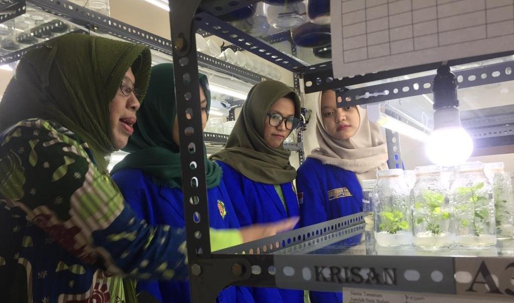 Sasana Kultura Budidaya Tanaman Langka Identitas Kota di Jawa Tengah