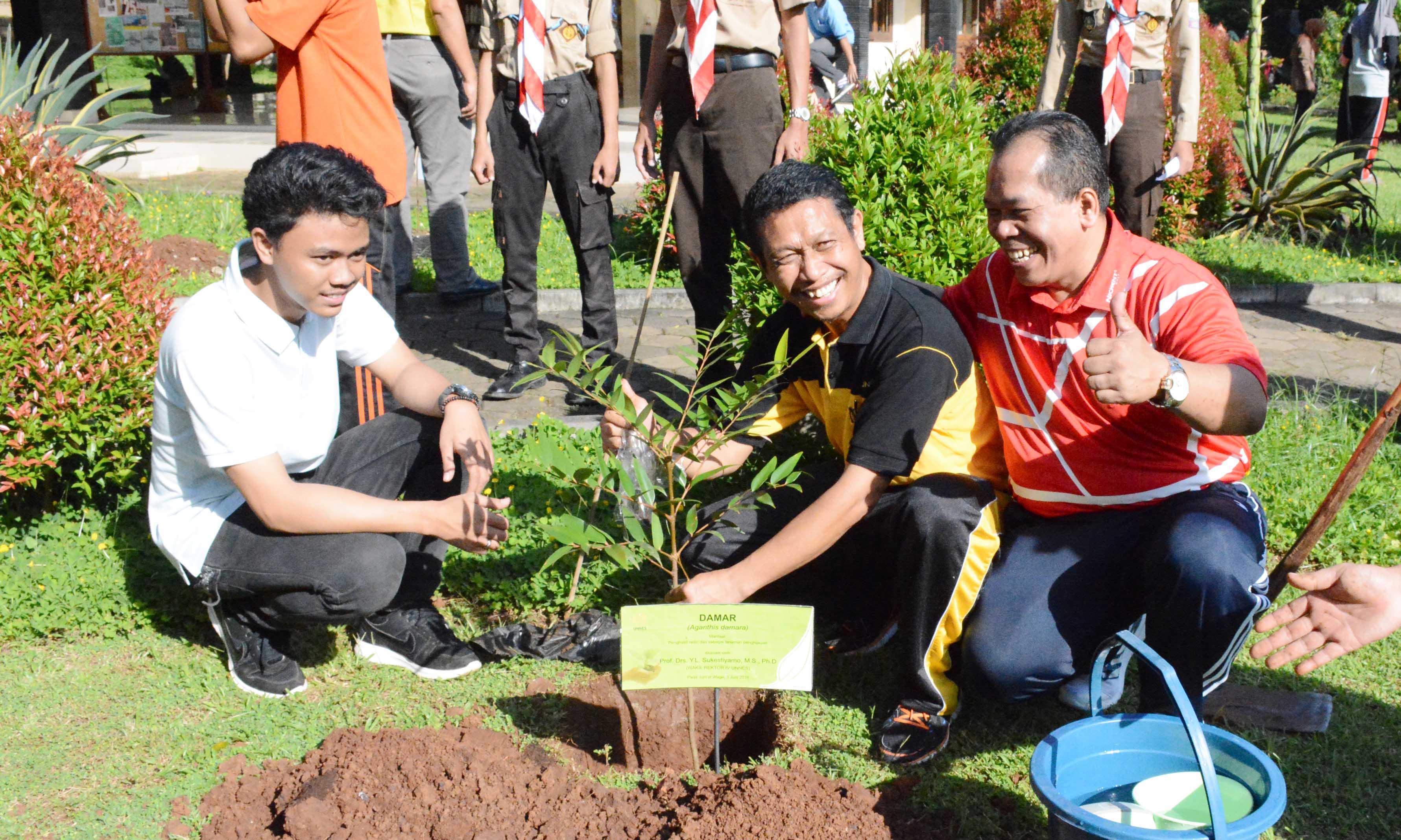 Sambut Hari Lingkungan Hidup, FMIPA Tanam Pohon