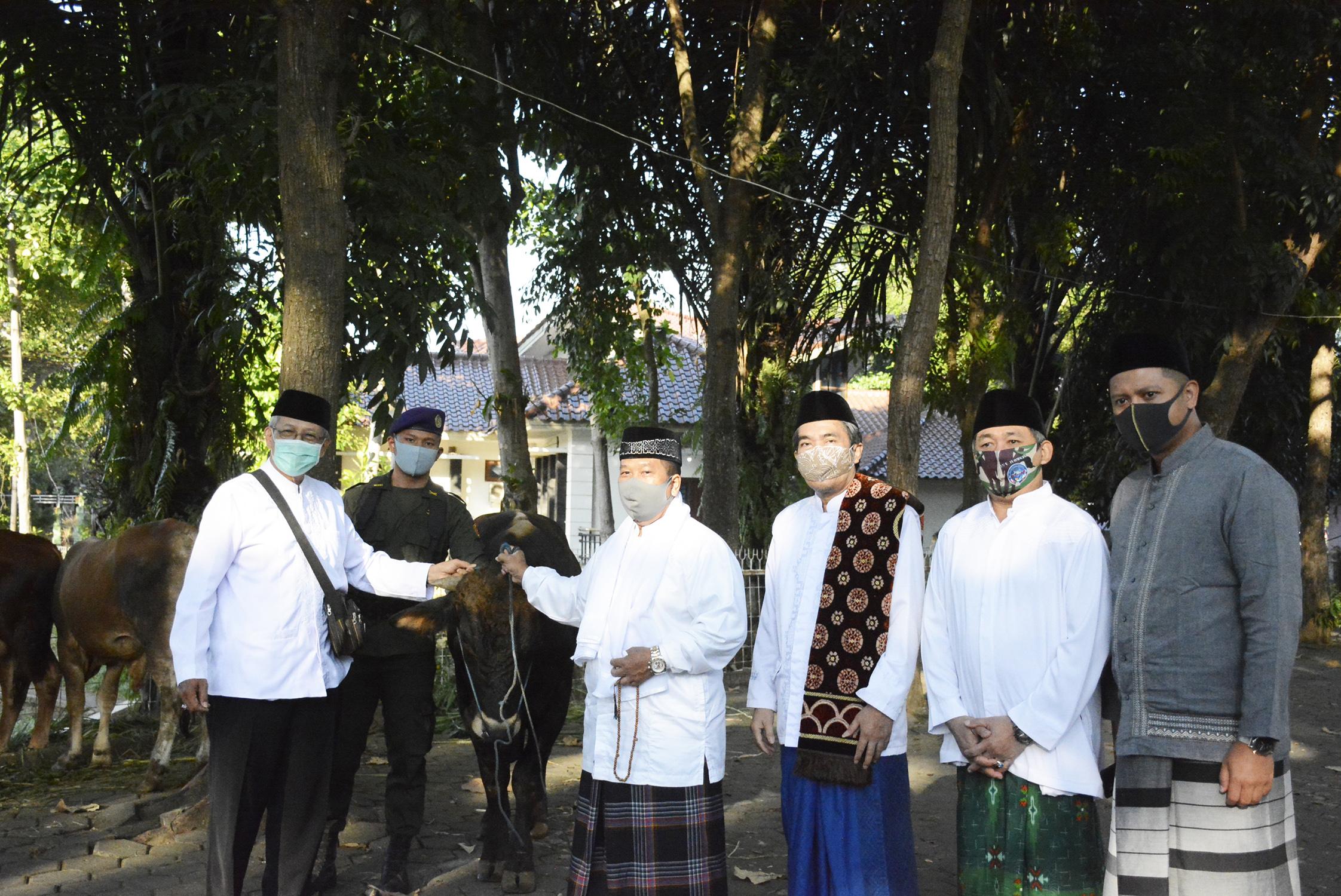 Rektor UNNES Serahkan 15 Ekor Hewan Kurban